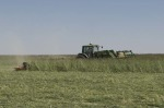 /ext/galleries/keeping-busy-with-cover-crops/full/Dan-DeSutter-11.jpg