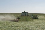 /ext/galleries/keeping-busy-with-cover-crops/full/Dan-DeSutter-14.jpg