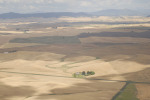 /ext/galleries/scenes-from-the-palouse/full/006_Palouse_FL_0810.jpg