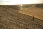 /ext/galleries/scenes-from-the-palouse/full/116_Palouse_FL_0810.jpg