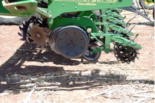 Barry Evans typically no-tills cotton into grain sorghum residue, although the residue layers this spring are sparse.