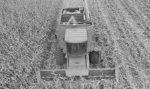 Harvest-Higher.jpg