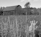 Barn-and-field.jpg