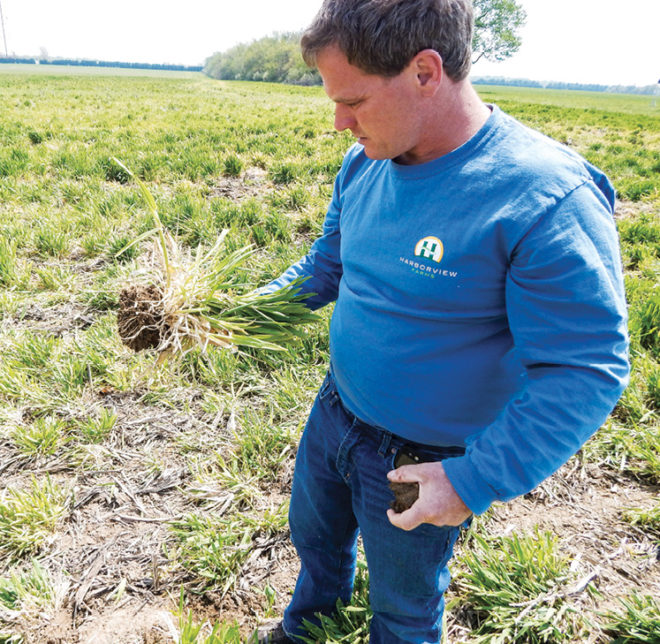 Precise Nutrient, Cover Crop Use Cleans Up Chesapeake