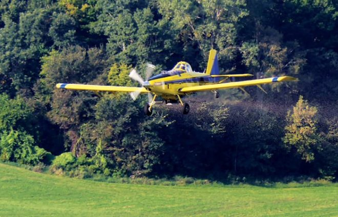 6 Tips for Flying On Cover Crops Successfully