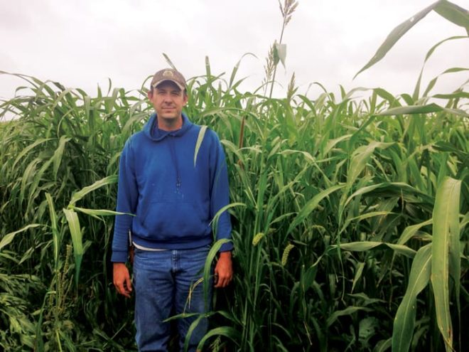 Diversified Crops and Grazing Cattle Provide No-Till Benefits