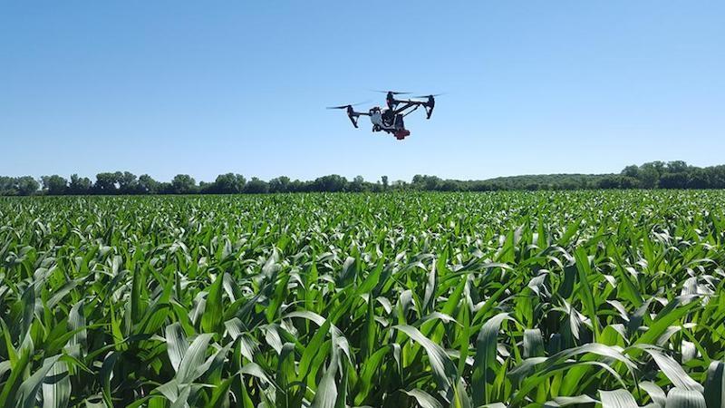 Nitrogen-Sensing Drone