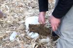 Spring soil health testing