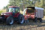 harvesting corn silage