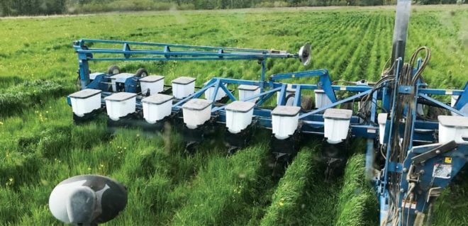 Boosting Soil Biology by Farming Green on Green on Green