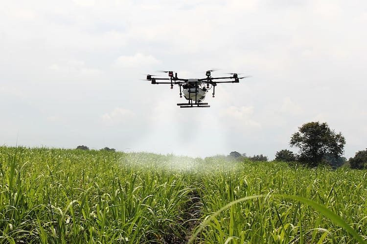 drone weed sprayer