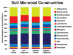 Soil_Microbial_Communities.jpg