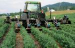 mowing-cover-crops.jpg