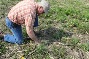 Ron Brownlee practices no-till farming
