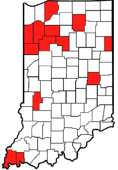 Palmer amaranth spreads in Indiana