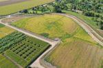 sdi irrigation
