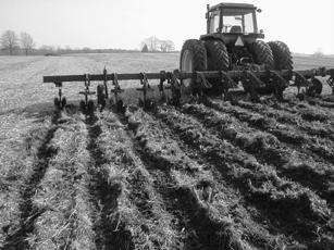 Dream Machine strip-tilling field