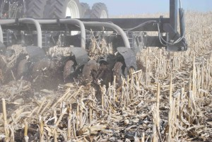 Strip-Till Strategies