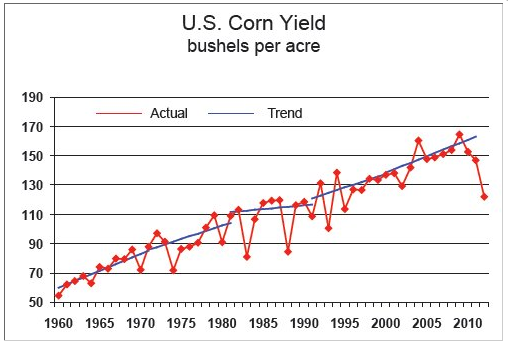 U.S. Corn Yields