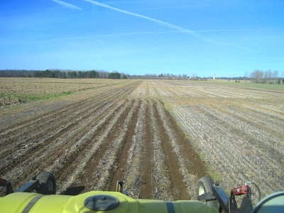 Fertilizer Choices For Fall Strip-Till