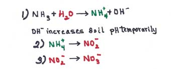equations for anhdrous ammonia