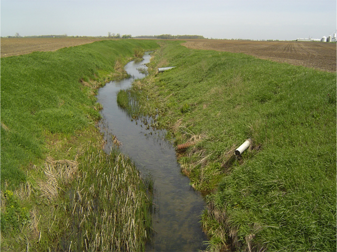 No-Till, Covers May Ease Nutrient-Loading Issues
