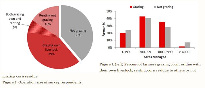 Farmers grazing residue
