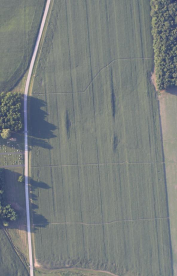 Indiana starter aerial