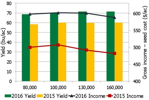 soybean planting rates