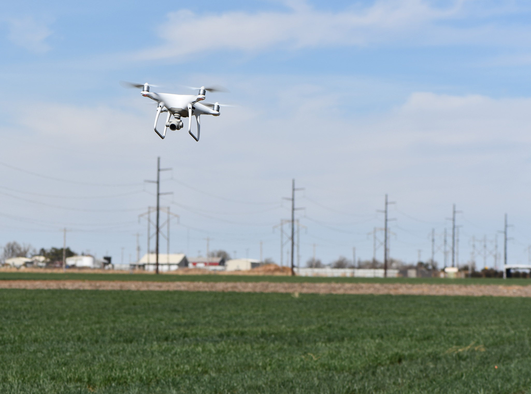 drones and wheat