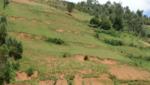 Uganda degraded fields
