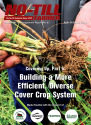 Covering Up, Part 5: Building a More Efficient, Diverse Cover Crop System